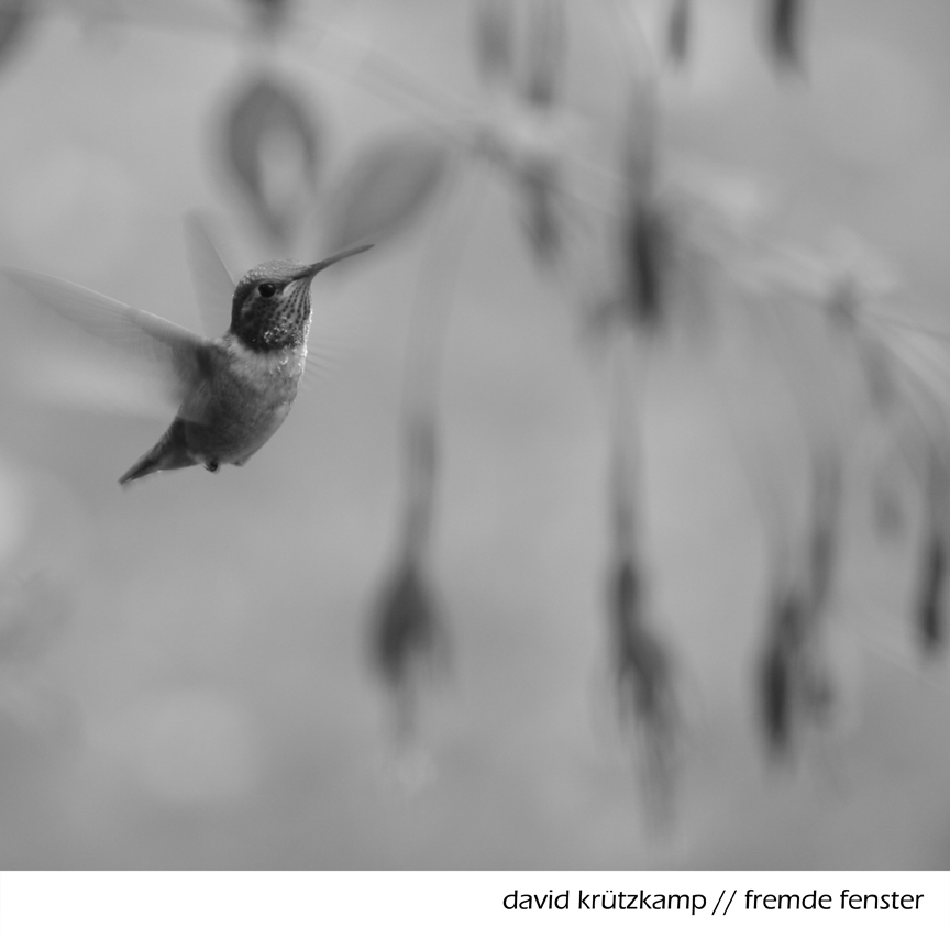 David Krützkamp - Fremde Fenster EP